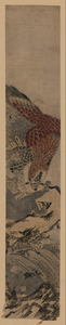 Eagle Attacking A Monkey. Image