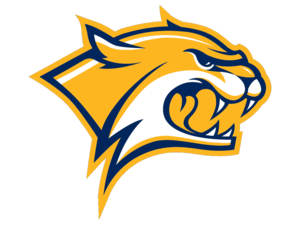 Wildcats Cut Gold Yellow Image