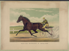 Pacing King Robert J., Record 2:01 1/2  / J. Cameron. Image