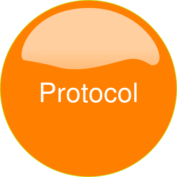 Orange Button Protocol Clip Art at Clker.com - vector clip ...