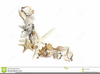 Starfish And Shells Clipart Image