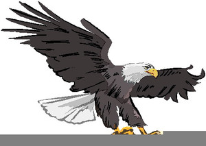 Patriotic Bald Eagle Clipart Image