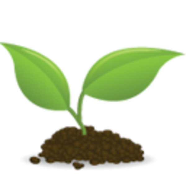 Icon Seedling | Free Images at Clker.com - vector clip art ...