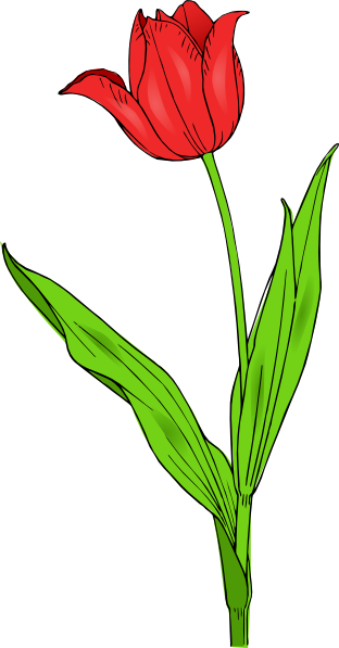 Red Tulip Clip Art at Clker.com - vector clip art online ...
