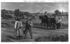 Prang S Aids For Object Teaching. Trades & Occupations - Plate 9. Haymaking Image
