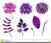 Free Clipart Violet Flowers Image