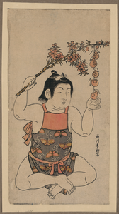 Male Child With Pleach Blossom Sprig. Image