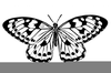 Free Black Butterfly Clipart Image