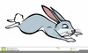 Free Rabbit Clipart Black And White Image