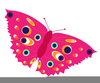 Colorful Butterfly Clipart Image