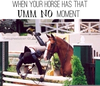 Equestrian Problems Quotes Image