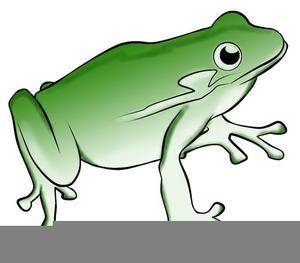 bullfrog clipart hat free images at clker com vector clip art rh clker com bullfrog clipart images