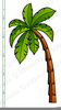 Palm Trees Clipart Image
