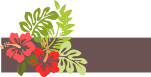 Hawaii Clip Art