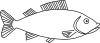 Fish Outline 3 Clip Art