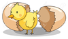 Chicken Hatching Clipart Image