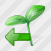 Icon Sprouts Import Image