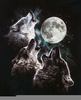 Wolfblood Wolf Howling Image