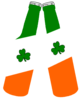 Beer Bottles Irish Flag Bottle Image