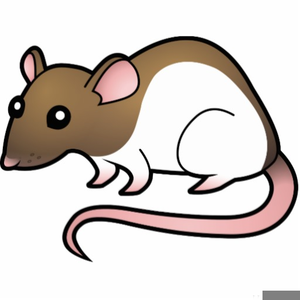 rats clipart free free images at clker com vector clip art rh clker com rat clip art photo rat clip art photo