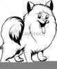 Pets Clipart Black And White Image