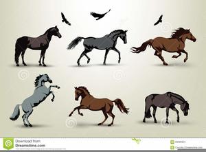 Wild Horse Clip Art - Royalty Free - GoGraph