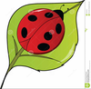 Ladybug With Book Clipart Image
