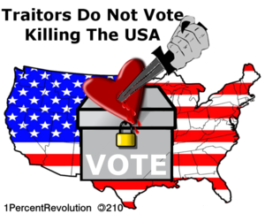 210 Vote Usa  Image