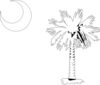 Sc Palmetto Tree - White Clip Art