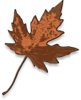 Brown Maple Leaf Clip Art
