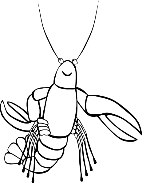 Crawfish Skinny Clip Art at Clker.com - vector clip art ...