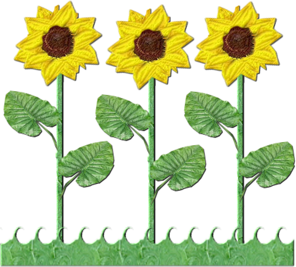 Flowers Row Of Sunflowers | Free Images at Clker.com - vector clip ...