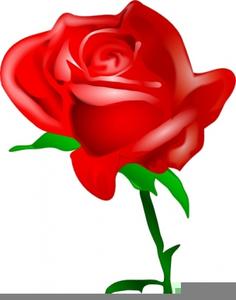 red rose clipart free free images at clker com vector clip art rh clker com rose bouquet clipart free rose clip art free download
