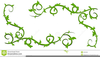 Vine And Branches Clipart Image