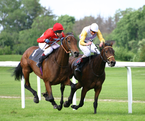 Jpeg Horse Racing Clipart Image