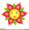 Flowers With Faces Clipart Image