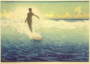Hawaii Surfing Image