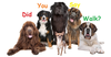 People Walking Dogs Clipart Image