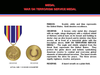 Global War On Terrorism Service Medal Image