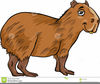 Animal Images Animated Clipart Image