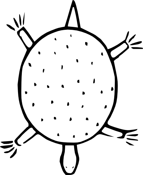 Cartoon Sea Turtle Outline Clip Art