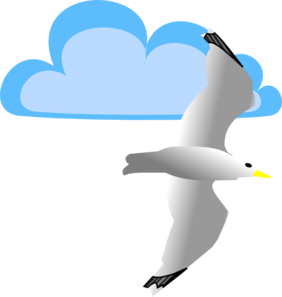 Seagull And Cloud Clip Art