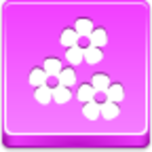 Free Pink Button Flowers Image