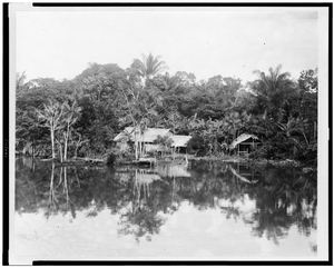 [indian Hut In Clearing On River Bank, Brazil] Image