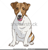 Clipart Of Jack Russell Terrier Image