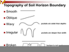 Soil Horizon Boundaries Image