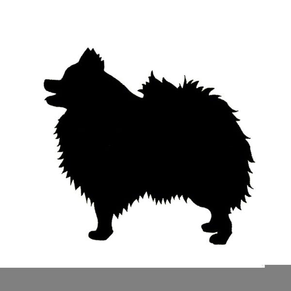 Pomeranian Clipart Free Images At Clkercom Vector Clip Art
