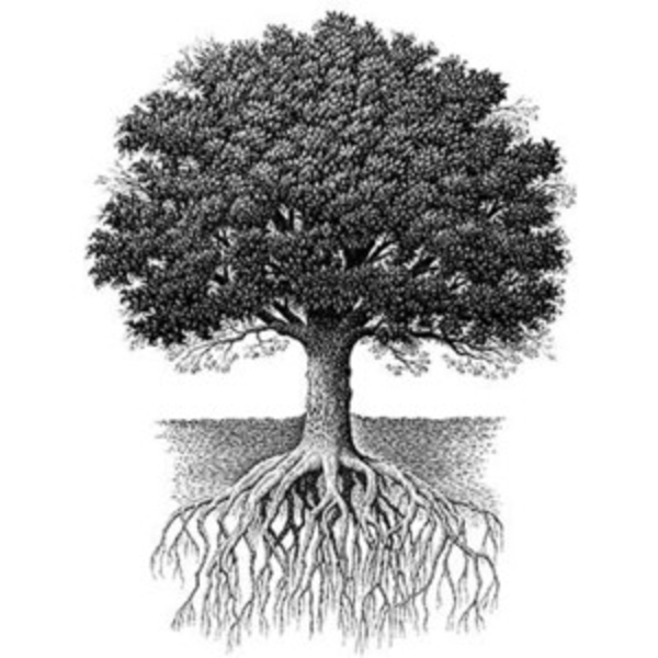 Oak Tree With Roots Tattoo: Free Images At Clker.com - Vector Clip Art