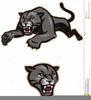 Free Clipart Animals Cougar Image