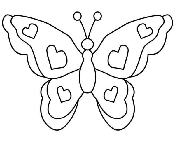 Animated Butterfly Pictures Butterfly Clipart